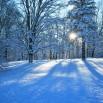 priroda-zima-sneg-doroga-4436.jpg